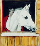Paardenmijmeringen